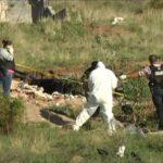Identifican 13 cuerpos abatidos en Calera, Zacatecas.