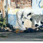 Domingo de homicidios deja a 10 personas sin vida en Zacatecas.