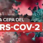 CEPA BRIT�NICA DE COVID-19 LLEGA A ZACATECAS