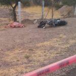 Cae de una motocicleta, mujer zacatecana y muere.