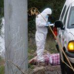 Zacatecas amanece con 9 ejecutados encobijados y crucificados.