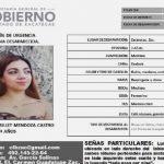 Perla Brillet sigue sin aparecer; familiares exigen respuestas tras la detención de una persona