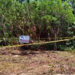 Otro cuerpo es localizado, suspendido de un árbol